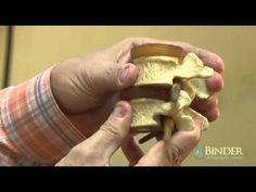 Binder Chiropractic