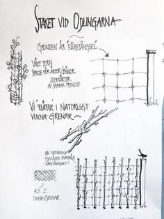 Ernst Kirchsteigers ritning till staketet vid odlingarna.