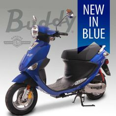 Genuine Buddy 50 and 125 now in metallic blue, now at Twist 'n' Scoot. www.twistnscoot.com