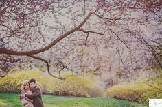 Wardrobe Ideas from Blue Dandelion Photography - Beautiful Portraits // Belovely You