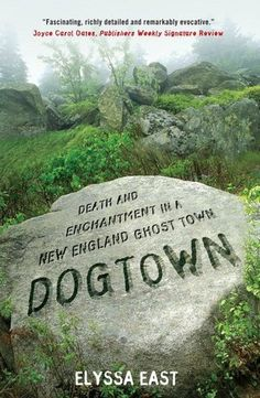 Dogtown: Death and Enchantment in a New England Ghost Town. A great read about a wild little spot on Cape Ann which I'd never heard of - and it's colonial ghosttown past, recently grisly murder, and impact it had on artists and poets. Very well done.