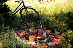 Met je maaltijdsalade van de Appie picknicken is zo 2012. Deze zomer gaan we naar Foodies. Dit is een traiteur op de Tweede van der Helststraat in Amsterdam. Mauricio verkoopt daar heel lekkere gerechten en wijnen. Vooral in de zomer is het een aanrader om daar lekkere dingen te halen en daar dan in het nabijgelegen Sarphatipark van te genieten.