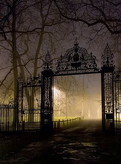 so love this scrolly...intricate...curly...cast iron work gate..