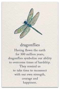 Dragonfly Support & Encouragement Card - Gardening For Life Great Quotes, Quotes To Live By, Me Quotes, Inspirational Quotes, Qoutes, Quotations, Yoga Quotes, Girl Quotes, Dragonfly Quotes