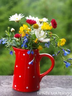 Flowers in a dotted mug