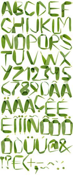 reed font alphabet http://www.handmadefont.com/