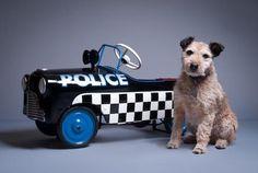 Vintage 1950's police pedal car