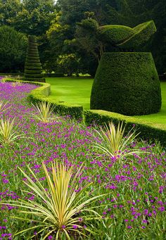 Long Garden - Cliveden, Buckinghamhsire, UK