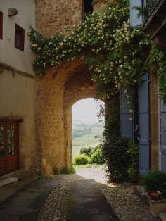the picturesque village of Montesquiou, south of the Gers