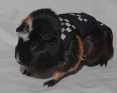 Piggy Pants Polka Dots by RodeysRoom on Etsy