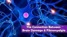 The Connection Between Brain Damage and Fibromyalgia