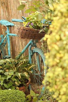 bicicletas decorativas