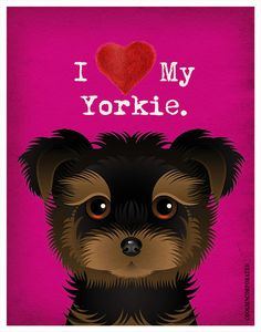 Duke Gifts Yorkshire Terrier Dog Compact Mirror