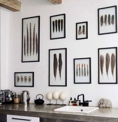 Feathers Decorating Red Reiding Hood Kitchen Wall Framed Feathers Diy Idea Home Interior Inspiration