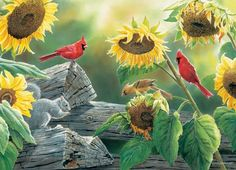 1000 Images About Artists Susan Bourdet On Pinterest