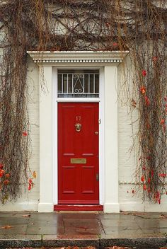 Love red. They say red doors and red wallets are good luck! More