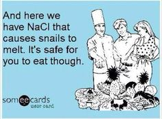 And here we have NaCl that causes snails to melt. It's safe for you to eat, though. Snails, Someecards, Chemistry, Science, Eat, Memes, Meme, Snail