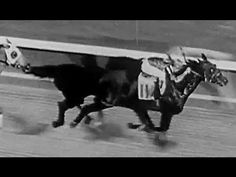 "Seabiscuit airing now @Terri Miller -alternate version: Horse Racing Champ ""Seabiscuit"" 21min: http://youtu.be/bQlKTeErxbc #horseracing #champion #history"