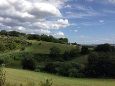 Candelara-Marcheshire #italy #summer