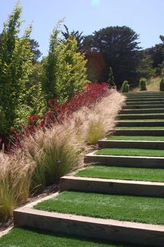 This is That is How to Make Garden Steps on a Slope 6 image_ you can read and see another amazing im. Landscape Steps, Landscape Architecture, Landscape Design, House Landscape, Contemporary Landscape, Landscape Grasses, Landscape Bricks, Desert Landscape, Garden Design Pictures