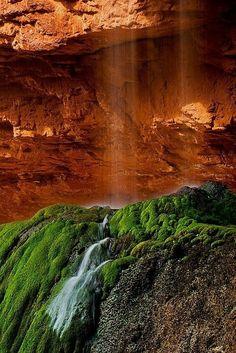 Ebor Falls Guy Fawkes River | Ribbon Falls | Magic England Australia, Guy Fawkes, New England, Waterfall, Ribbon, Magic, River, Outdoor, Photos