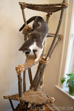 Natural Handmade Cat Tree - New Ideas Cool Cats, Cool Cat Trees, Cat Climbing Tree, Diy Cat Tree, Cat Playground, Unique Cats, Cat Room, Cat Accessories, Handmade Accessories