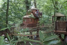 Once Upon A Blog...: Fairy Tale Treehouses
