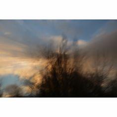 ethos: paisagem #1295