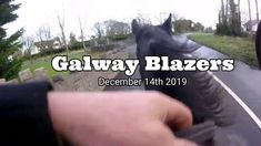 Galway Blazers, Ireland. Cross Country Jumps, Beach Rides, All That Jazz, Horses For Sale, Cob, Equestrian, Irish, Ireland, Blazers