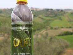olife vs sindrome metabolica