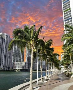 October Sky  (  by @gigicoloma ) #miami305life #miami