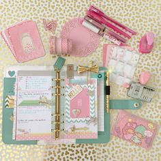 Pretty in pink (and Teal ☺️) #colorcrush #colorcrushplanner #websterspages