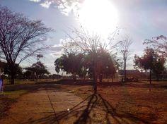 A10 - O céu de Brasília, aberto a maior parte do tempo, favorece o clima seco e vegetação pouco densa em muitos locais