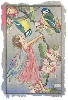 Molly Brett Postcard - Apple Blossom fairy - Medici Society