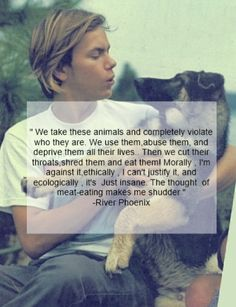 """""""We take these animals and completely violate who they are. We use them, abuse them and deprive them all their lives. Then we cut their throats, shred them and eat them! Morally; I'm against it, ethically; I can't justify it, and ecologically; it's just insane. The thought of meat-eating makes me shudder."""" - River Phoenix"""
