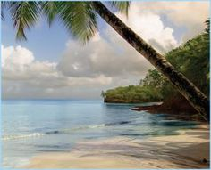 Looking for an All-Inclusive Resort on St. Lucia?: Smugglers Cove