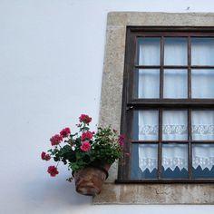 By the streets of Obidos . Pelas ruas de Óbidos #obidos #walkinginobidos #streets #portugal #oeste #westregionofportugal #hotelrealdobidos #obidoscastle #landscape #tourism #greatday #flowersinavase #hollidays #bythewindow #relax #placetovisit #destination #happytime #sogood #perfectfortwo #bomdia #greatday #vacations #ferias #romanticdestination #charme #oestealive #portugal_de_sonho #portugalalive #placetovisit #details
