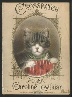 Cat whose eyeroll suggests that the Polka is not her favorite genre  (1886?)  Anybody know a link that isn't just on Pinterest?
