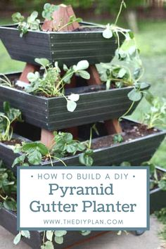 Growing strawberries in containers is an easy way to enjoy super-sweet fruits all summer long. Strawberry plants are compact and perfect for tucking in small spaces like pots, planters, and baskets. I decided to build a unique DIY pyramid gutter planter for the plants. Now we can plant a lot more strawberries without taking up much space in the backyard.  #diy #freeplans #projects #homedecor #furniture #woodproject #gardening #doityourself #homeimprovement Diy Furniture Plans, Diy Furniture Projects, Woodworking Projects Diy, Wood Projects, Outdoor Projects, Garden Projects, Garden Ideas, Growing Strawberries In Containers, Diy Gutters