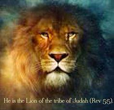 Rev. 5:5