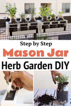 Mason Jar Herbs, Mason Jar Herb Garden, Diy Herb Garden, Garden Steps, Home Vegetable Garden, Mason Jar Diy, Garden Plants, Indoor Plants, How To Garden
