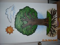 1000 images about leader in me ideas on pinterest for 7 habits tree mural