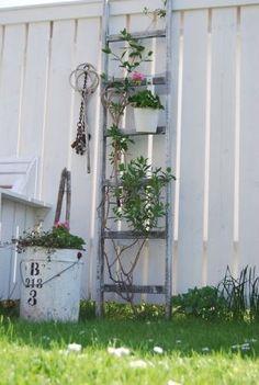 ladder-decoreren-tuin - love this idea reuse an old ladder Old Wooden Ladders, Old Ladder, Vintage Ladder, Wooden Fence, Garden Whimsy, Garden Junk, Garden Yard Ideas, Garden Tips, Garden Ladder