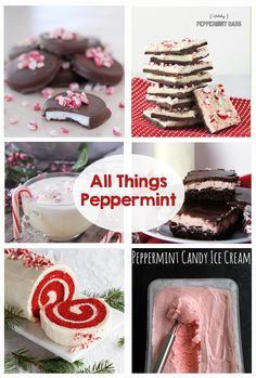 All things peppermint! Ice cream, mints, cheesecake, bark, egg nog, milkshake, popcorn, cake, brownie, oreo, hot chocolate, extract, sugar scrub, bath salts, bath bomb and so much more! Yum!