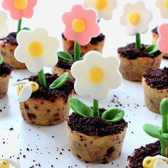 Illustration Cookies Pot de Fleur
