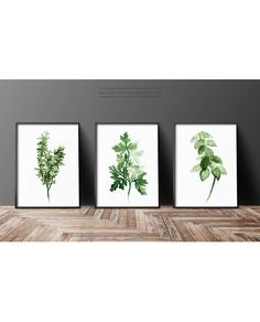 Herbs Set Dining Room Wall Print, Thyme Botanical Poster, Herbs Garden Decor, Art For Kitchen, Basil Watercolor Painting, Green Illustration
