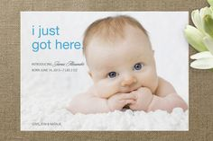 First to Arrive Birth Announcements by Christiana ... at Minted.com