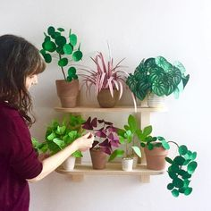 Paper plants are having a moment, and no wonder. They are fanciful, three-dimensional versions of houseplants. In some cases better versions—they don't die Handmade Flowers, Diy Flowers, Paper Flowers, Paper Leaves, Fabric Flowers, Paper Succulents, Paper Plants, Chinese Money Plant, Papier Diy