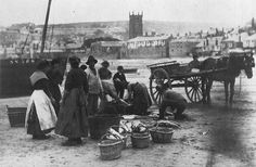 Gutting Fish - St Ives Harbour 1890 - Cornwall Guide Photos