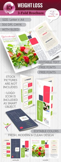 Nutritionist dietitian tri fold brochure word template for Letter size brochure template